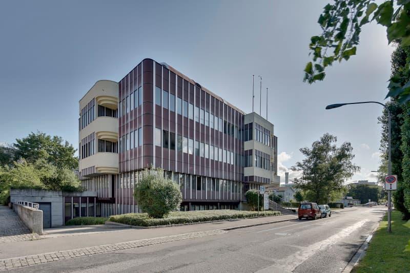 Siewerdtstrasse 105