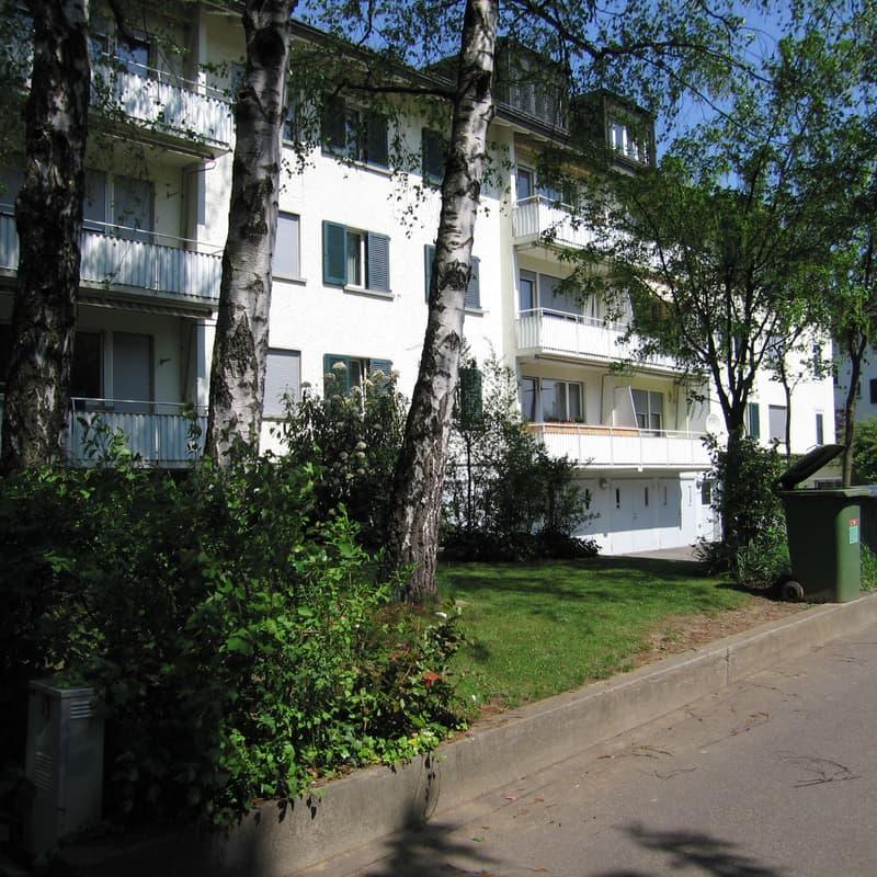 Charmante 3-Zimmerwohnung an ruhiger Quartierstrasse in Wallisellen