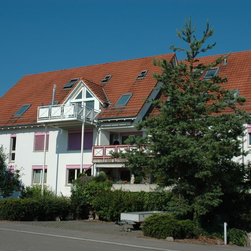 Birchwiesstrasse 43