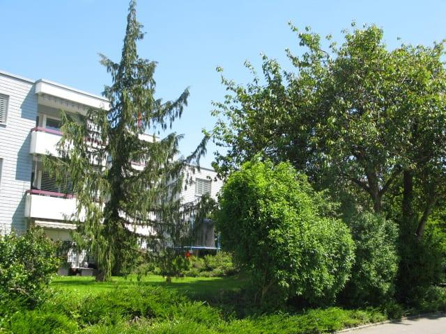 Röthlerholzstrasse 1