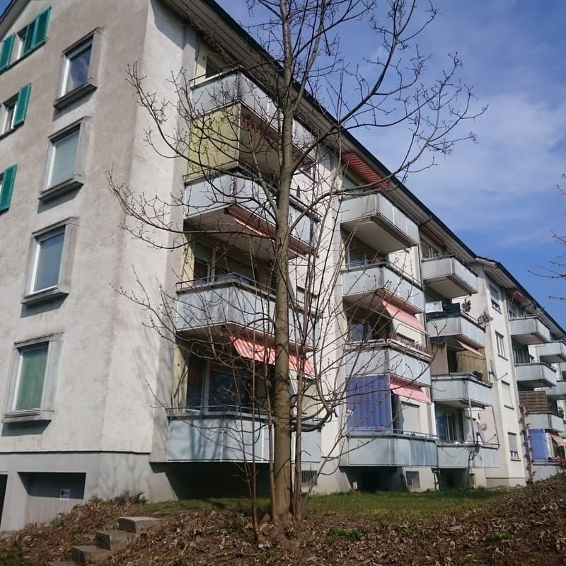 Guggenbühlstrasse 71
