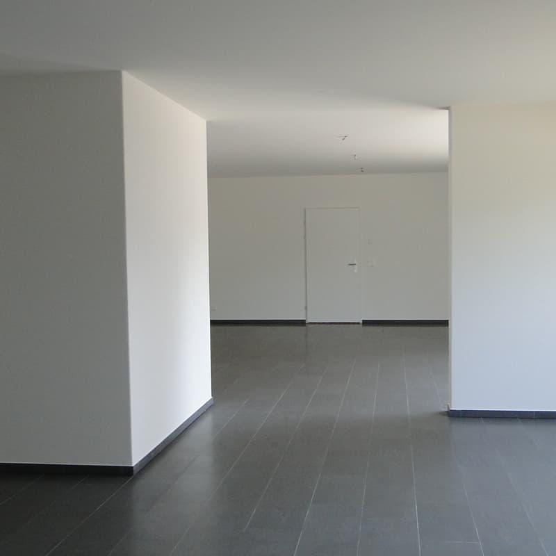 Neue Jonastrasse 117