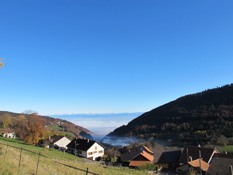 Avenue des Alpes 33