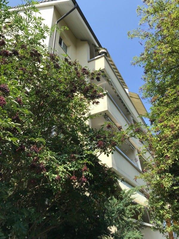 Gartenstrasse 3