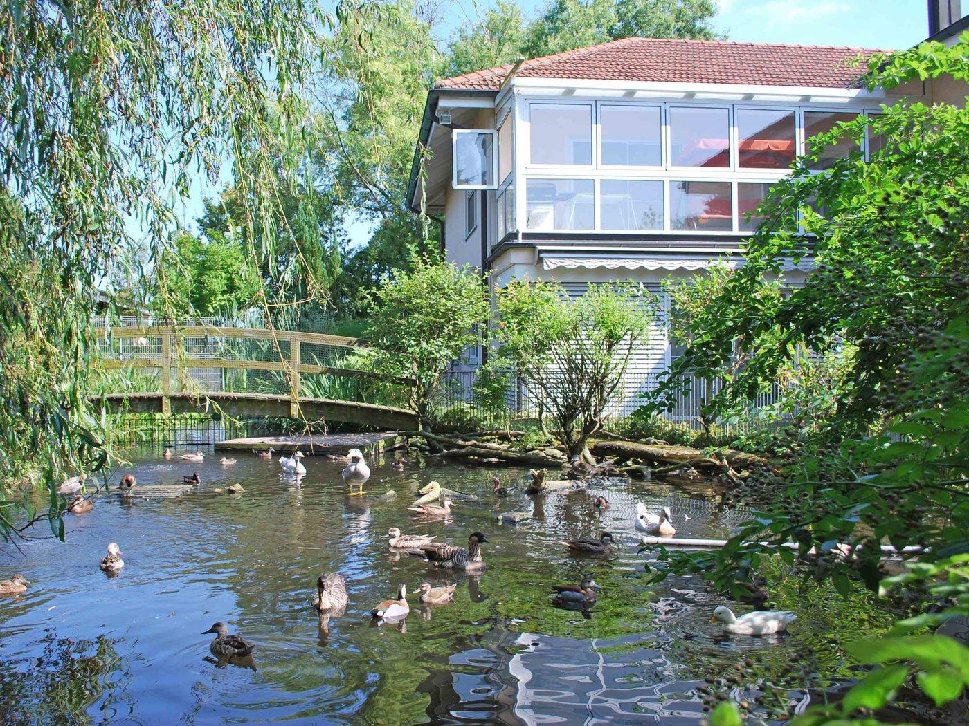 ruhig gelegene villa mit gartenteichanlage, buch sh | villa kaufen, Hause und Garten