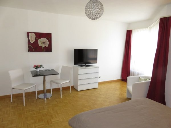 Furnished 1 Room Apt Near Novartis Campus Mobliertes 1 Zi