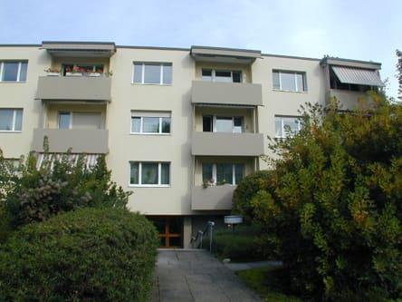 Paracelsusstrasse 66