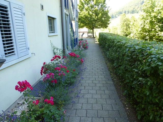 Bachstrasse 387