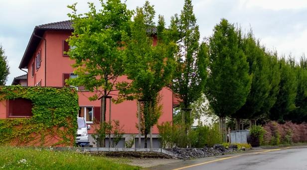 Winkelstrasse 29