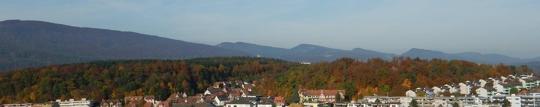 Mühletalweg 11