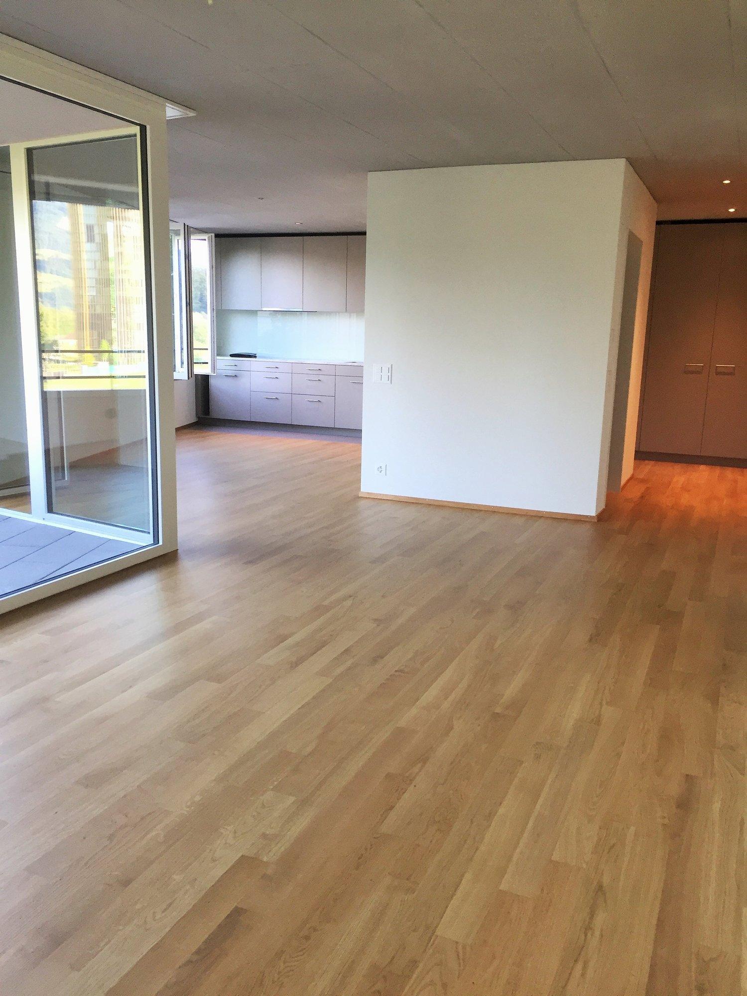 Miete: Neu erstellte Wohnung in Luzern