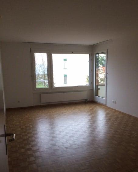Riedhofstrasse 356