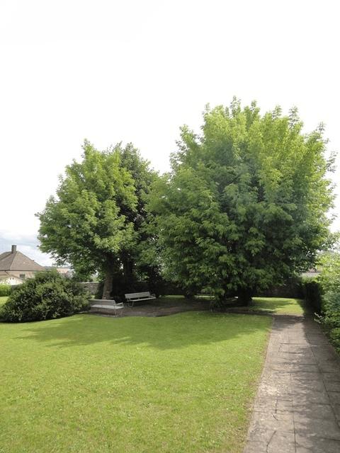 Schützenweg 5