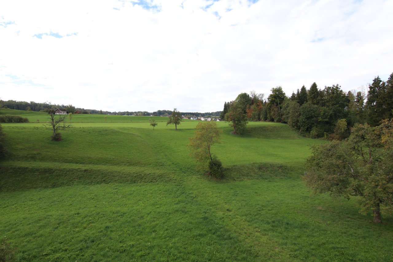 Eichholz 2
