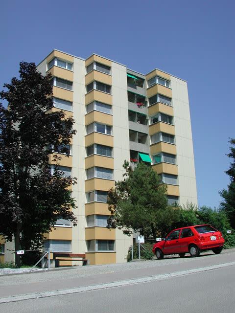 Zwyssigstrasse 20