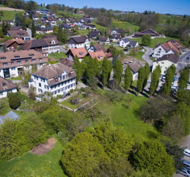 Alpenblick 3