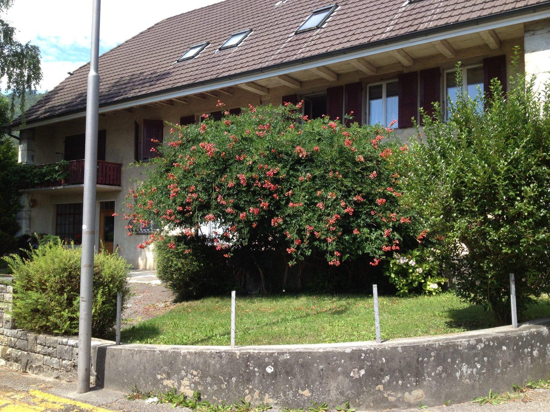 Alte Landstrasse 58