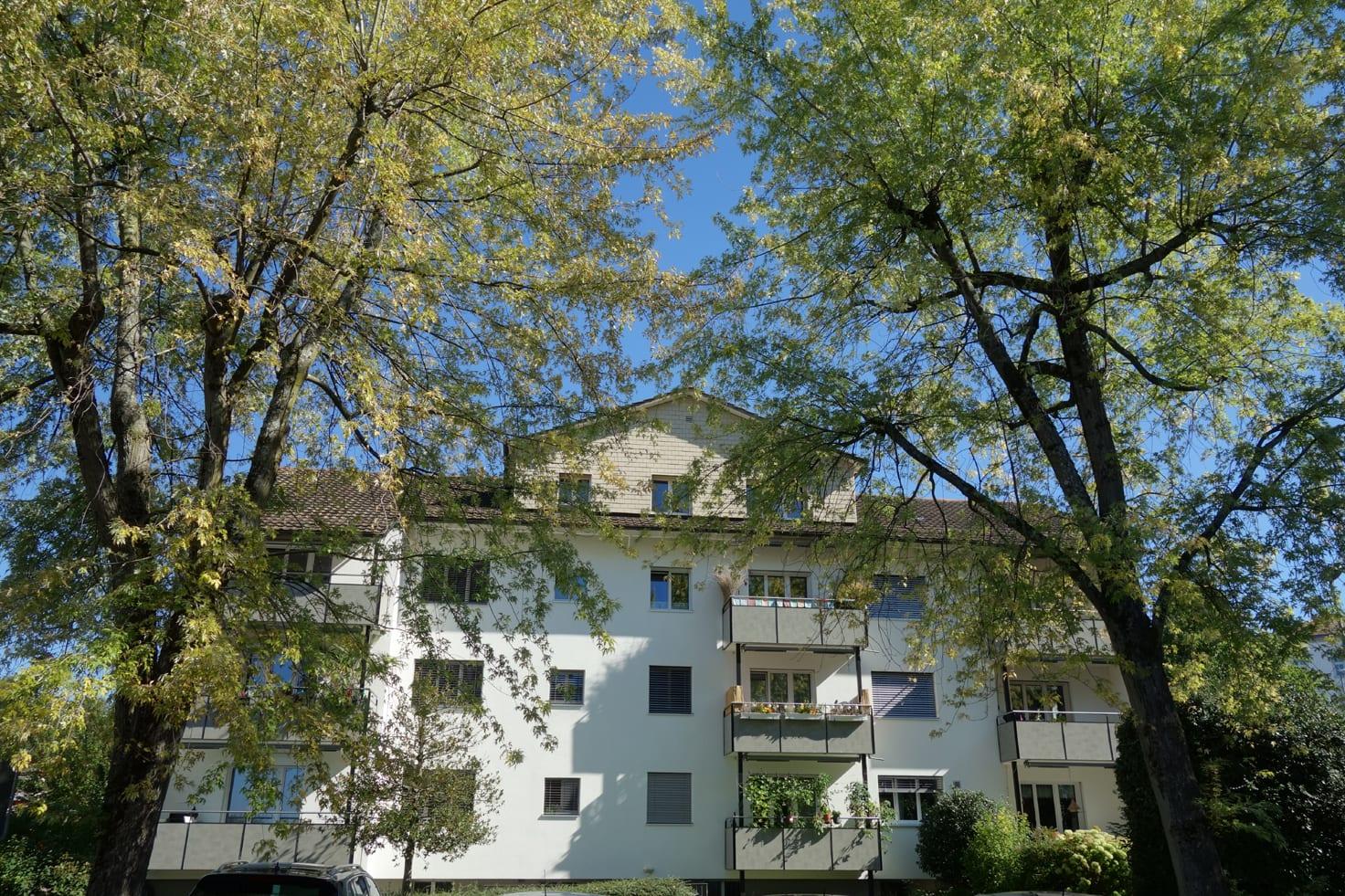 Chapfwiesenstrasse 2