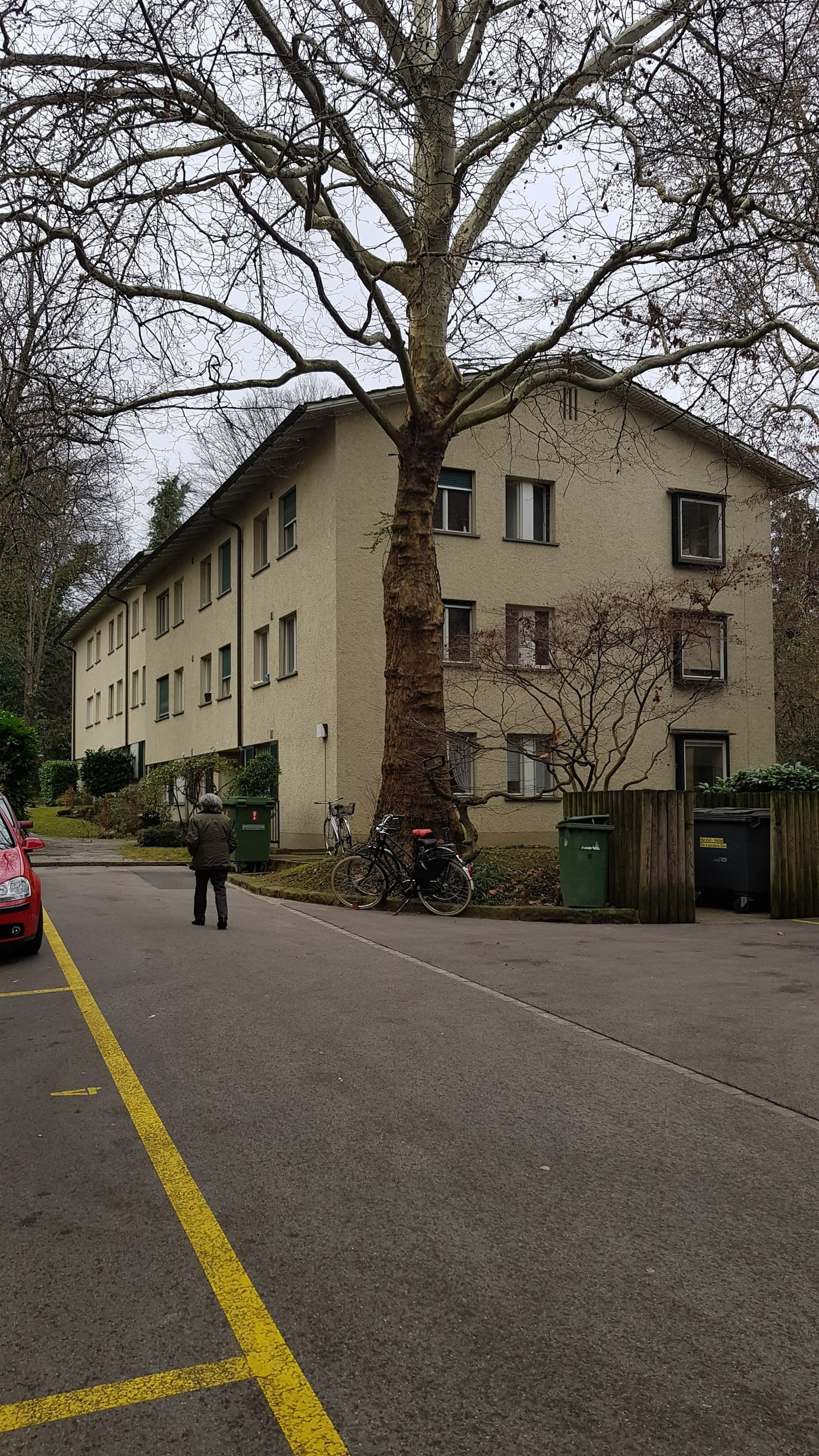 Mühlebachstrasse 31