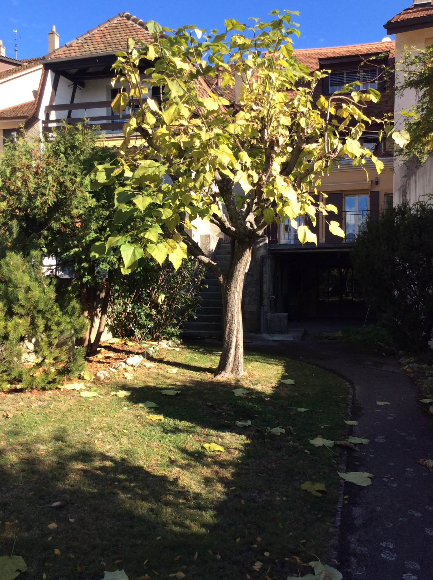 Grand-Rue 14