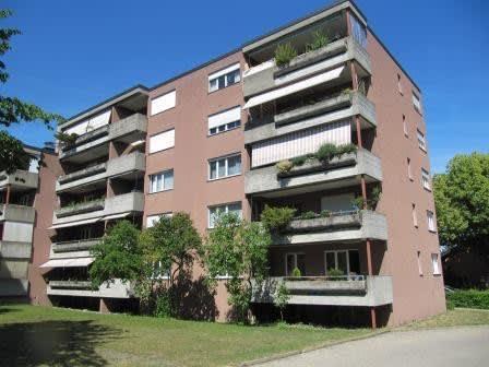 Miete: Herzige Wohnung über den Dächern von Frauenfeld