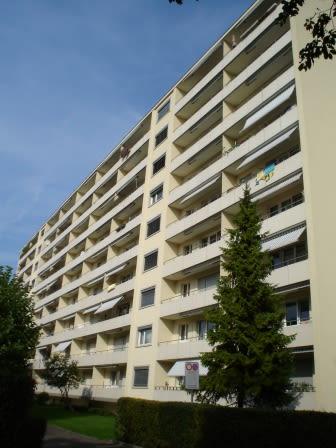 Altwiesenstrasse 199