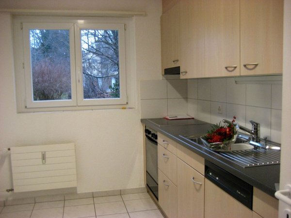 Apartment For Rent Ruti Zh Homegate Ch