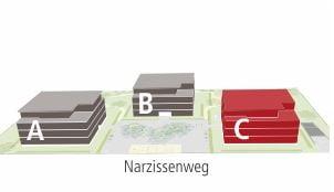 Narzissenweg