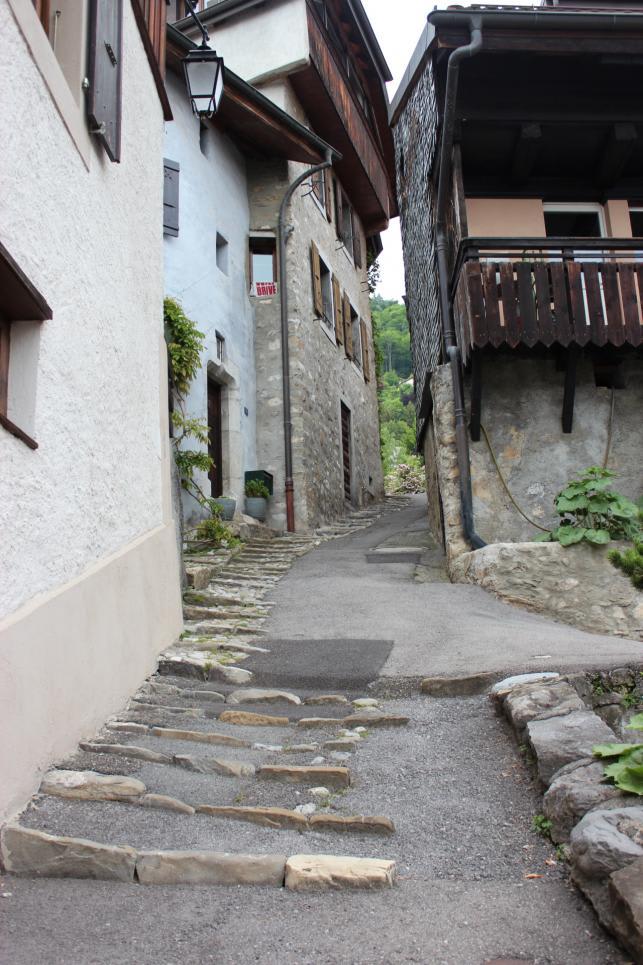Chemin de Boriodaz 14