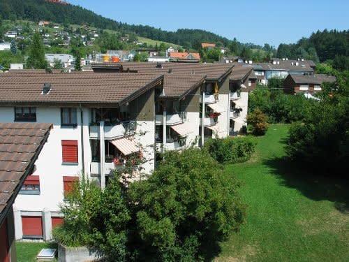 Auwiesenstrasse 45B