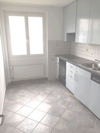 Hochstrasse 255