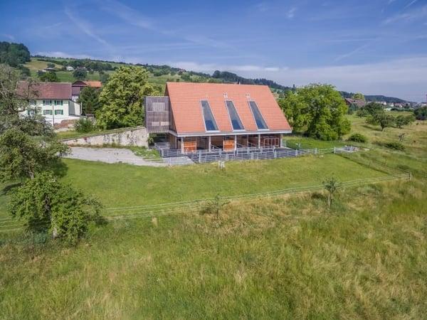 Immobilien Kaufen Beinwil Freiamt Wohnung Oder Haus Kaufen