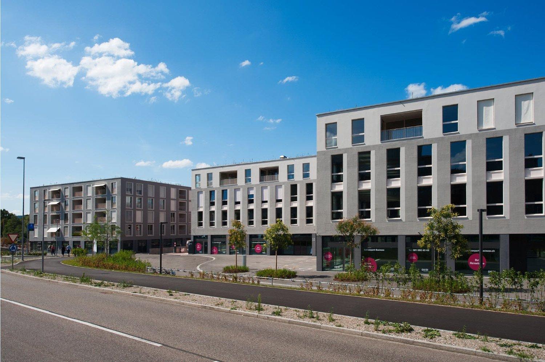 Miete: Wohnung im Salmenpark