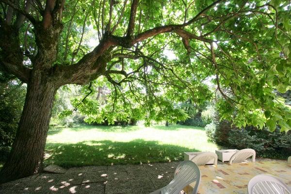 Appartement meublé de 5 pièces avec jardin dans le quartier des Charmilles
